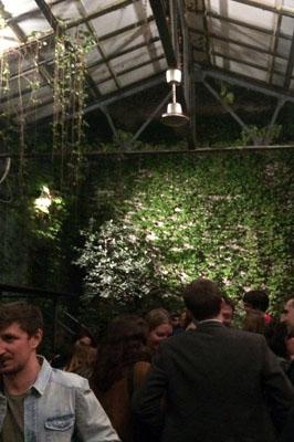 Inside Bar Frida