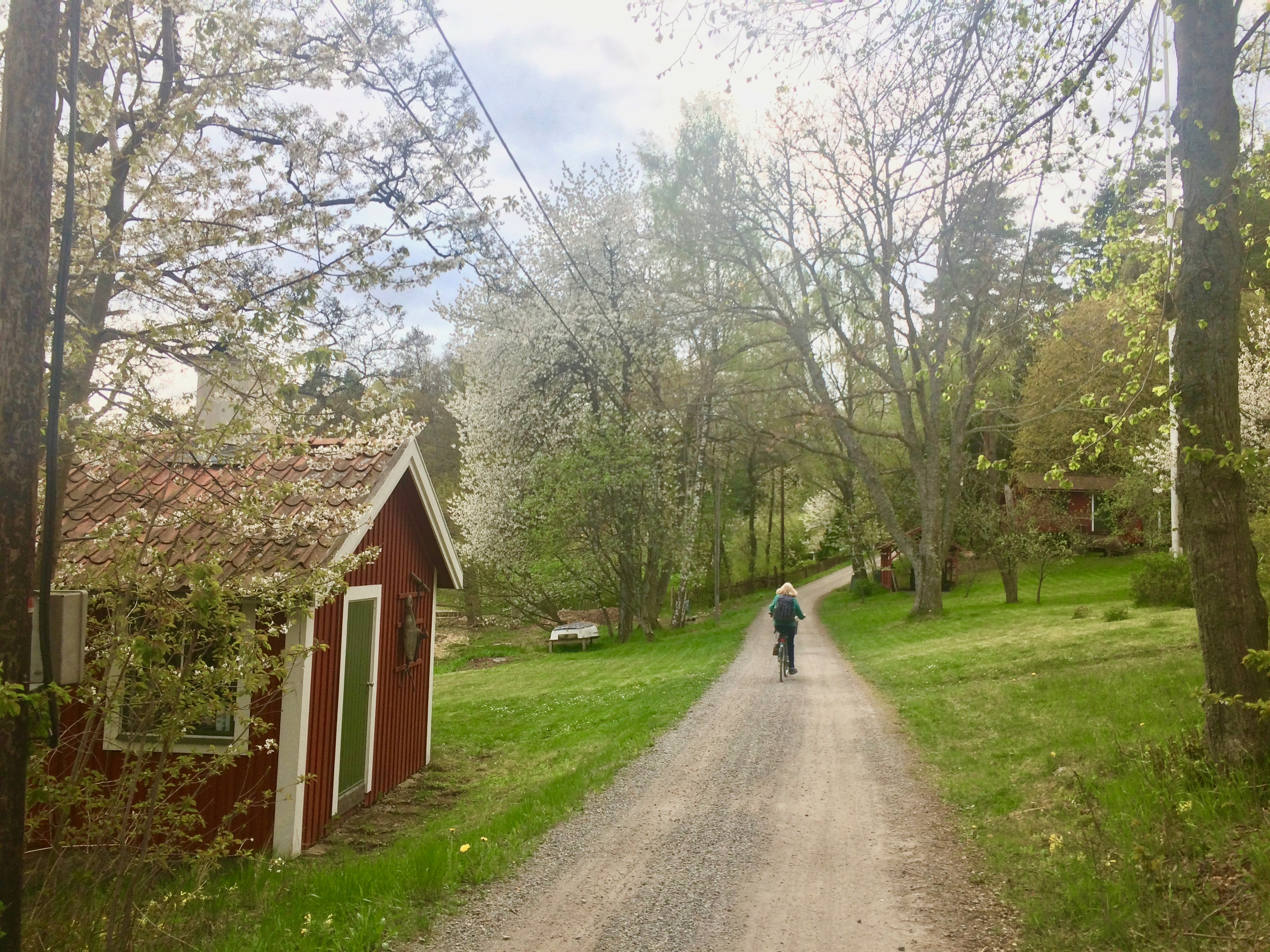 Cycling on Svartsö in the archipelago