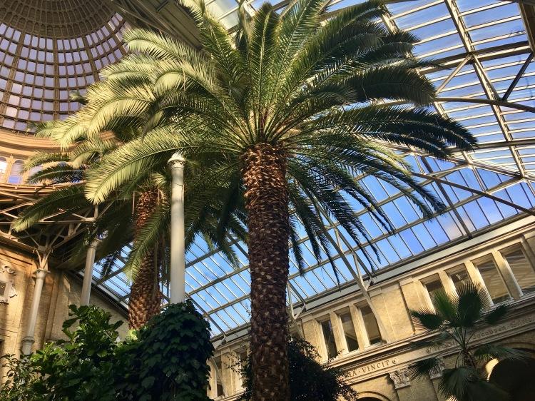 Inside the botanical gardens of the atrium in the Ny Carlsberg Glyptoteket, Copenhagen, Denmark