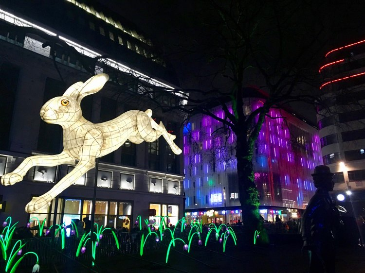 A hare, part of NIGHTLIFE by Lantern Company with Jo Pocock