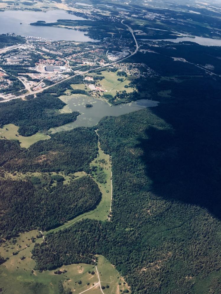 Forests outside Stockholm
