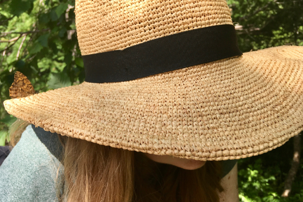 Butterfly on my straw hat in the Japal Alps