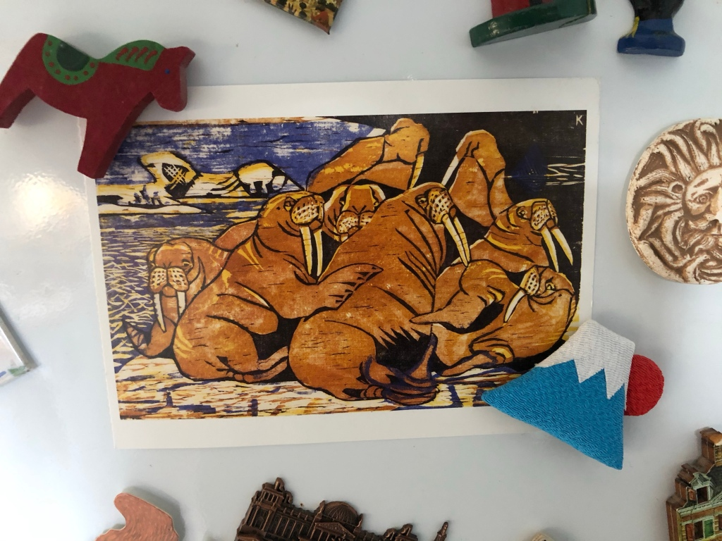 Walrus art on our fridge