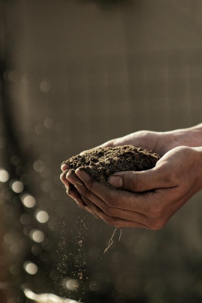 Soil on a farm