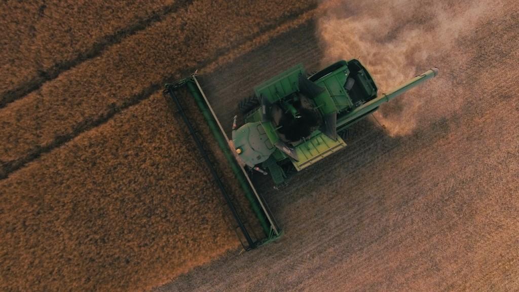 Farming in a wheat field