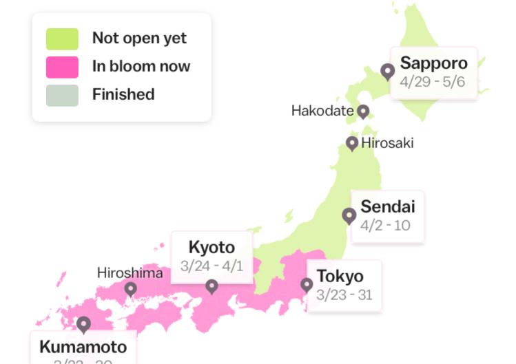 a blossom forecast for 2021